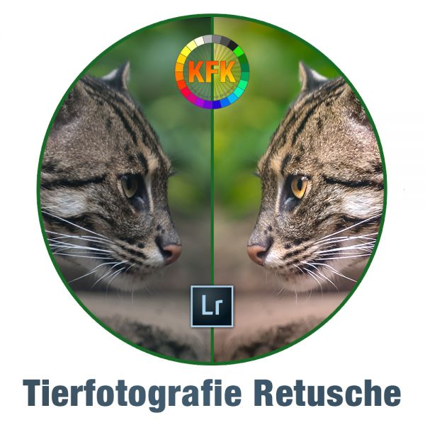 Kaplun Filter Kollektion: Tierfotografie-Retusche (Lightroom)