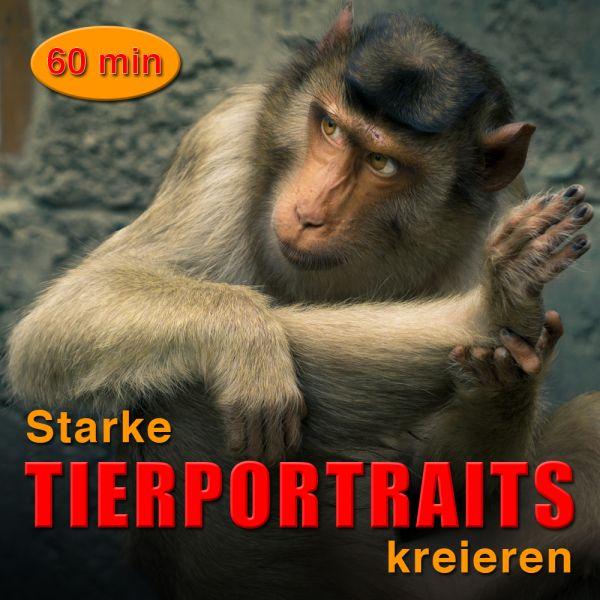 Starke Tierportraits kreieren