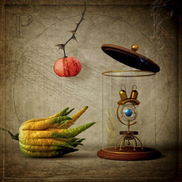 Stilleben mit Zitrusfrüchten